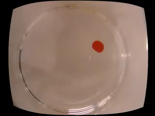 Artificial chemical life experiment